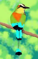 012 Oiseau couleurs by ShuaTinwe