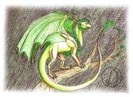 Element dragon, earth by Drakoni13
