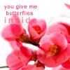 Flowers by Just-LayDee