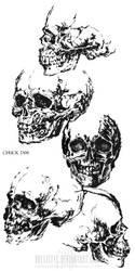 skull studies by Ballistyc