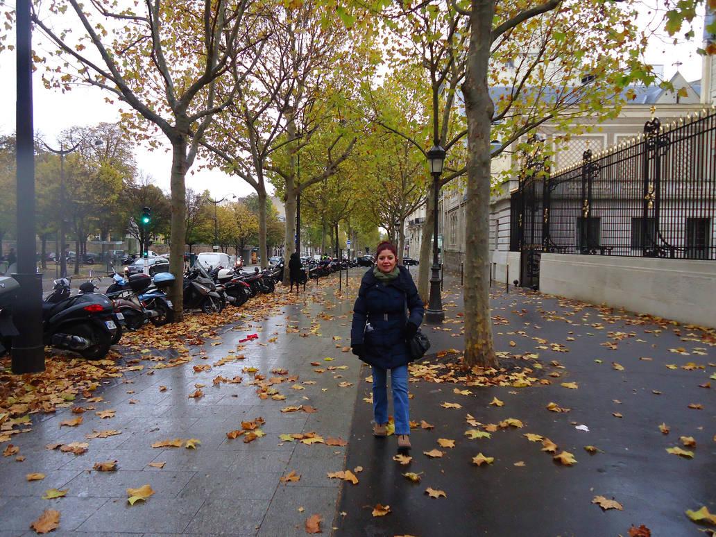autumn in paris streets by ekin06