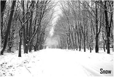 Snow by Jodmiester