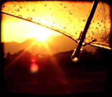 Desert Rain by beam-of-moon