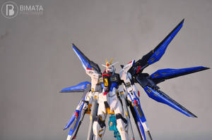 Strike Freedom by bedeviere