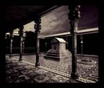 Cyrus_Zulqarnain by proama