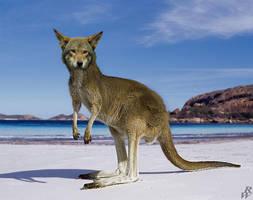 Marsupial wolf by Dwarf4r