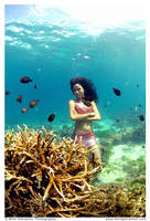 Underwater by underwatermeister