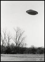 The UFO by Nashoba-Hostina
