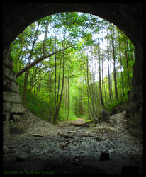The Light at the End of the Tunnel by Nashoba-Hostina