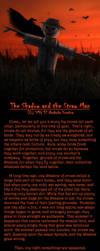 The Shadow and the Straw Man by Nashoba-Hostina