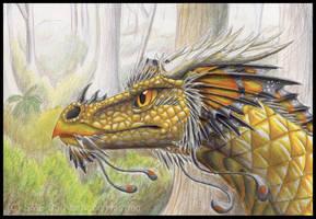 Monarch by Nashoba-Hostina