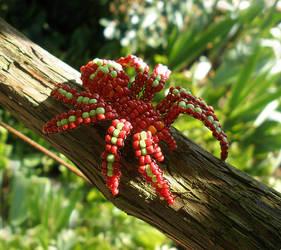 Red Spider by PardalisStrix