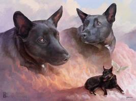 Pet Portrait - Allie by stevegoad