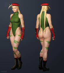 Cammy - Super Street Fighter II by ZabZarock