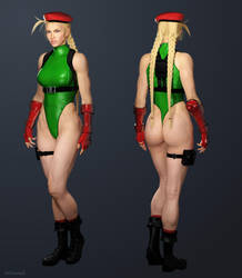 Cammy - Street Fighter V by ZabZarock