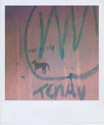 Polaroid 32 _ Dog life by oxigenium