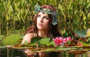 Water Lilies 53 by MarjoleinART-Stock
