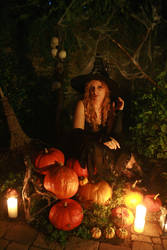 Halloween 2008 1st Shoot 02 by MarjoleinART-Stock