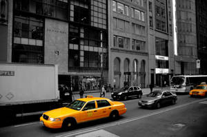 City Life by citybound