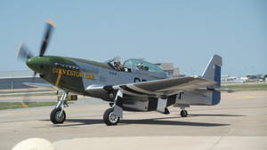 P-51 Mustang by vash68