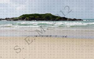 A Walk on the Beach by Ixtila