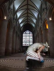 Zebra transformation by Nightskymun
