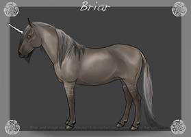 Briar by sandeyes13
