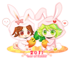 Rabbit Year by oi-m
