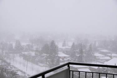 Snow Storm Toronto by Stirk-Bostaurus