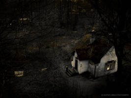 The Dark Fairytale by Gustavs
