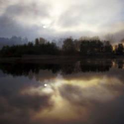 Mirror by flytiger