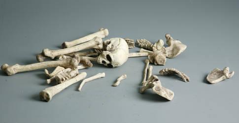 Bones - 3 by mjranum-stock