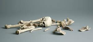 Bones - 4 by mjranum-stock