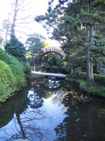 Japanese Tea Gardens by Jngriesel