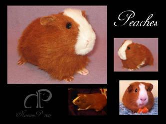 Guinea Pig Plushie - Peaches by Morumoto