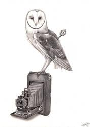 Steampunk Barn Owl by GSkills
