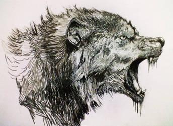 Wolf by Zombiraptor