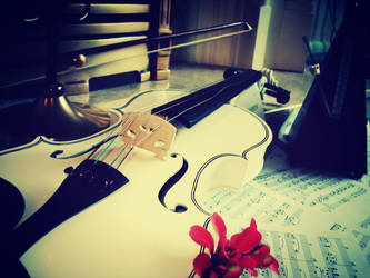 Violin's Song by AnnieRG