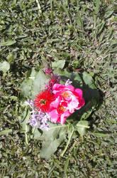 bouquet of flowers by AbjectBigfoot7n
