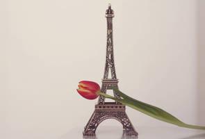 i love miniature eiffel towers by by-sannee