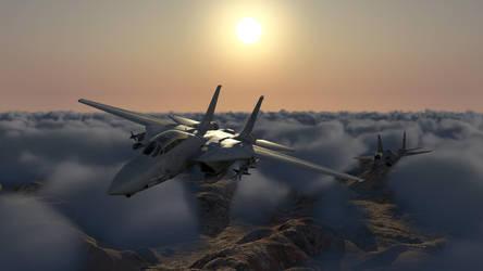 F-14 Tomcat by Sparmi
