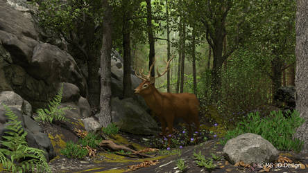 Forest Scene by Sparmi