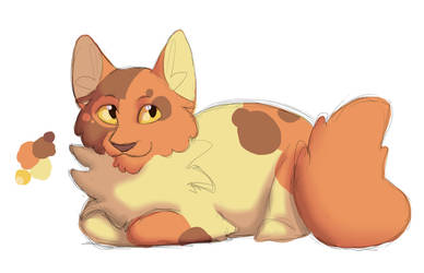 Peachpaw Redesign by Simatra