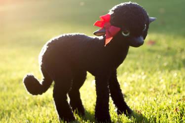 Handmade Poseable Lamb by KaypeaCreations