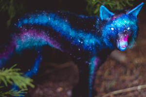 Handmade Poseable Galaxy Wolf Art Doll by KaypeaCreations