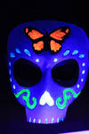 Day of the dead butterfly by SilverCicada