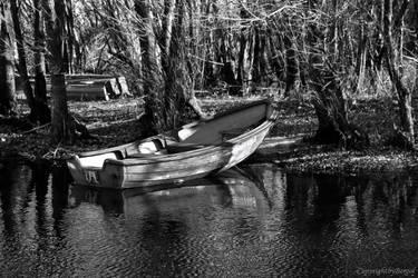 boat by bergol