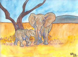 Elephants by Trillstar