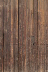 Wood Texture - 16 by AGF81