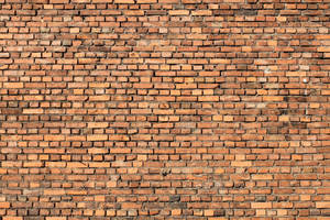 Brick Texture - 18 by AGF81